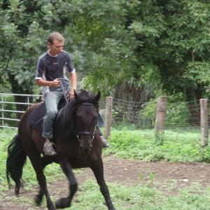 Florian à la ferme